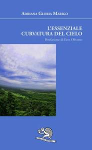 Adriana Gloria Marigo, L'essenziale curvatura del cielo