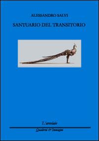 Alessandro Salvi, Santuario del transitorio
