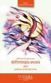 Alfonso Cardamone, Dell'entropia ancora